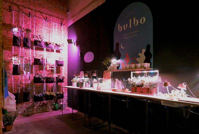 Bulbo_2013-®Bulbo_1